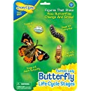 Butterfly Learning Toy - 4 Piece Set Shows Metamorphasis Of A Butterfly