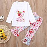 1-6 Years Toddler Kids Baby Girls Long Sleeve Little Animals Top T Shirt+ Cute Floral Pants Clothes Home Wear Outfit Sets (White B, 3T)