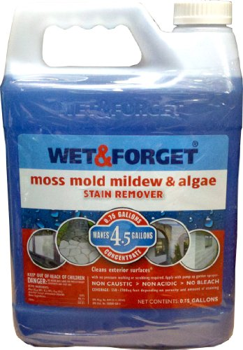 wet-forget-moss-mold-mildew-algae-stain-remover-075-gal-concentrate-makes-45-gallons