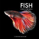 Fish Calendar 2018: 16 Month Calendar