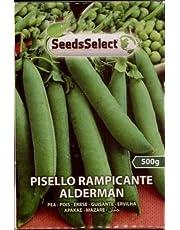 PISELLO DA SEME RAMPICANTE ALDERMAN GR 500