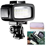 Neewer Waterproof Up to 131ft/40m Underwater 20 LED 700LM Flash Dimmable Fill Night Light with 3 Color Filter(White, Orange, Purple) for GoPro Hero 6 5 4 3+ Action Camera and All DSLR Cameras