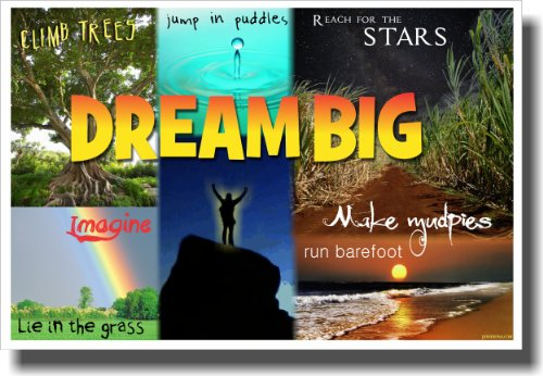 dream posters for classroom