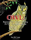 Owl: Representing Information Using the Web Ontology Language