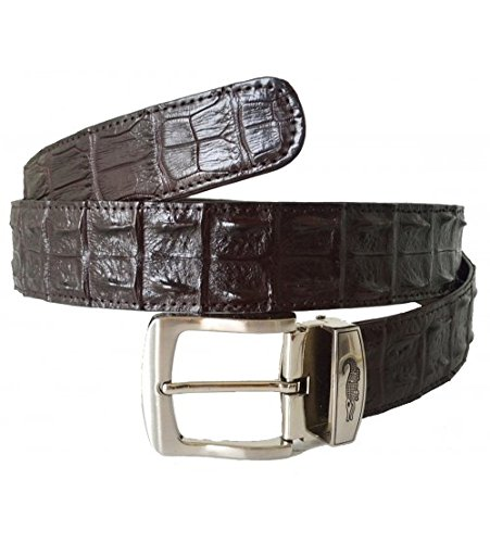 Authentic Sefaro Crocodile Skin Men's Double Rows Backbone Pin Belt 40''-42'' Dark Brown by Authentic Sefaro Crocodile Skin