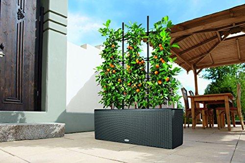 lechuza trio cottage 30 planter mocha wicker watering. Black Bedroom Furniture Sets. Home Design Ideas