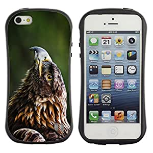 Be-Star Impreso Colorido Diseño Antichoque Caso Del iFace Primera Clase Tpu Carcasa Funda Case Cubierta Par Apple iPhone 5 / iPhone 5S ( Beautiful Eagle Hawk )
