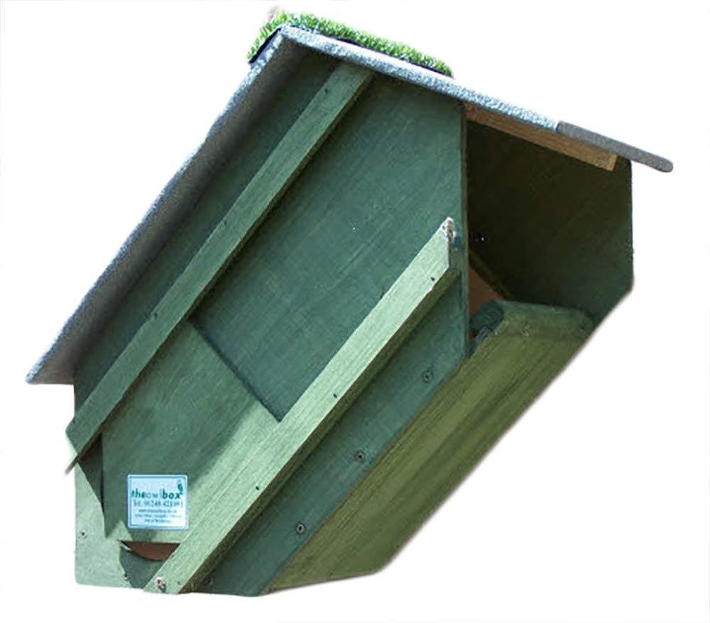 Tawny Owl Nest Box (Forest green)