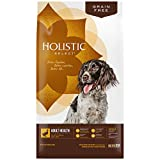 Holistic Select Natural Grain Free Dry Dog Food, Duck Meal Recipe, 24-Pound Bag Review