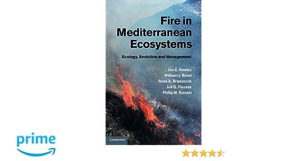 fire in mediterranean ecosystems rundel philip w keeley jon e bond william j bradstock ross a pausas juli g