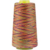 Rainbow Polyester Sewing Thread Variegated Used for Quilting Serger Overlock Embroidery All Purpose Connecting Threads for Sewing Machine and Hand Repair Works 3000 Yards Over The Rainbow