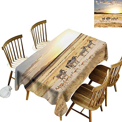 Floral Tablecloth W50 x L80 Safari Zebras with Their Striped Coats in Savannahs Sunset Adventure Africa Wild Safari Cream Golden Suitable for Traveling Outdoors Family Restaurant Coffee Shop More