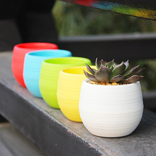 Mkono 4 Inch Small Succulent Planter Colorful Plastic Plant Flower Pots Set of 5, Mixed Color