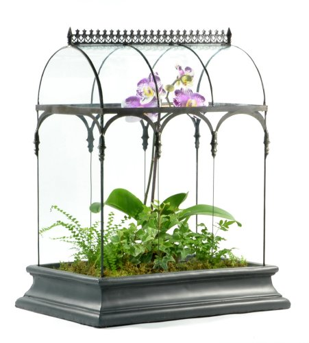 H Potter Glass Plant Terrarium Planter Container Wardian Case ()