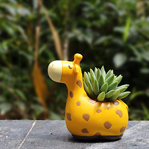 LETOOR Mini Succulent Planter Giraffe Flower Pot