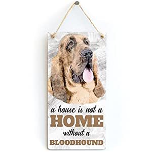 "Meijiafei A House is Not A Home Without A Bloodhound - Dog Sign/Plaque for Bloodhound Lovers 10""x5"" 2"