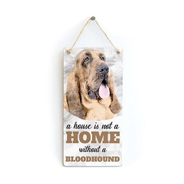 """Meijiafei A House is Not A Home Without A Bloodhound - Dog Sign/Plaque for Bloodhound Lovers 10""""x5"""" 1"""