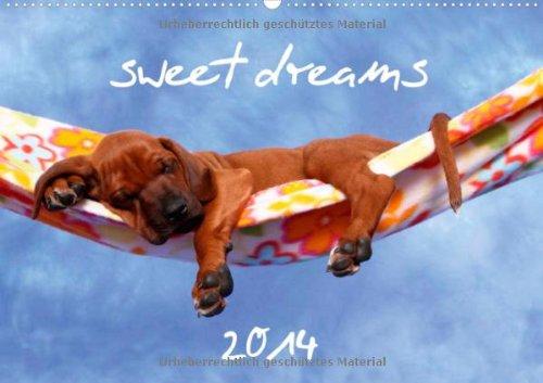 sweet dreams 2014 (Wandkalender 2014 DIN A3 quer): schlafende Hundewelpen (Monatskalender, 14 Seiten)
