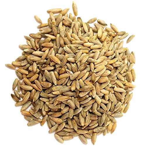 Organic Rye Berries, 20 Pounds - Whole Wheat Grain, Non-GMO, Kosher, Raw, Bulk Seeds, Product of the USA