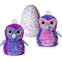 Hatchimals Glittering Garden - Hatching Egg and...