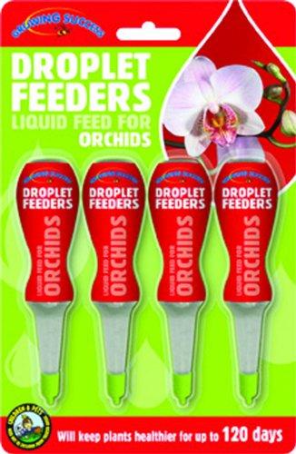 Orchid Droplet Feeders (4) GF6543