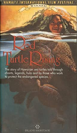 Amazon Com Red Turtle Rising Movies Tv
