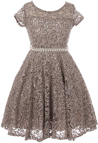 BNY Corner Big Girl Cap Sleeve Floral Lace Glitter Pearl Holiday Party Flower Girl Dress Silver 14 JKS 2102 ()