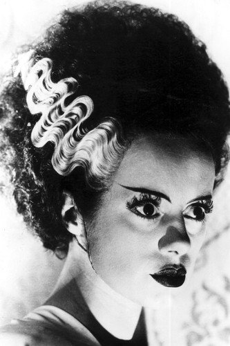 bride of frankenstein portrait wwwpixsharkcom images
