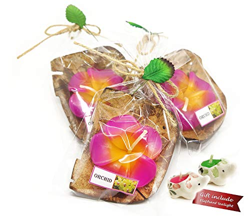 Mongkol Sovenir Shop Tealight Candles Flower Shape Coconut Shell Holder Size 4 inch Mix Color 3 per Pack -