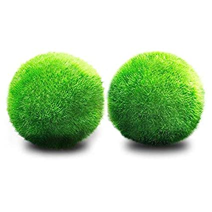 JIALONGZI Bola de Musgo para Acuario Forma de Bola, Ideal para ...