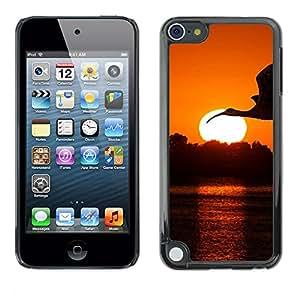 EJOY---Cubierta de la caja de protección la piel dura para el ** Apple iPod Touch 5 ** --Crane Cigüeña Sunset