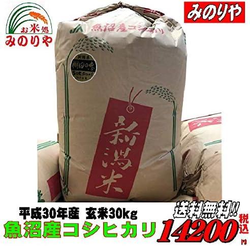 令和元年産 魚沼産 コシヒカリ 玄米 30kg(10×3)