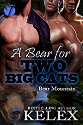 A Bear for Two Big Cats (Bear Mountain Book 16)