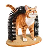 Multi-Function Tv Arched Plastic Pine Needle Cat Brush Wool Implement Scratch Board Artifact Toys
