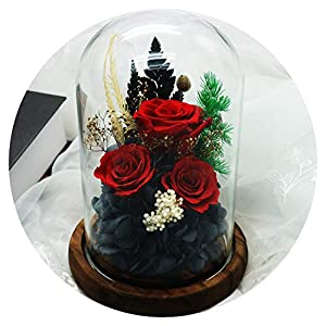 shine-hearty Preserved Hydrangea Rose Flower DIY Immortal Rose Peony in Glass Cover Gift Box Fresh Flower,4 23