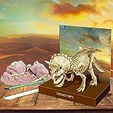 Great Gizmos 4M Kidz Labs Dig a Dinosaur