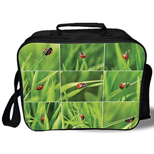 Insulated Lunch Bag,Ladybug,Ladybug over Fresh Grass Collection Divided Collage Vibrant Life Lawn Foliage Theme,Green Red,for Work/School/Picnic, ()