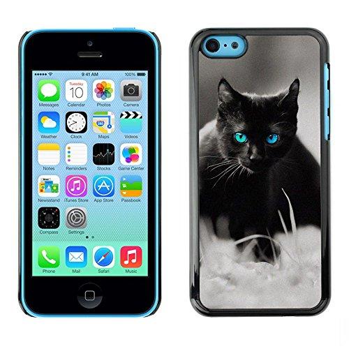 GooooStore/Housse Etui Cas Coque - Cute Black Cat Siamese White Pet Kitten - Apple iPhone 5C