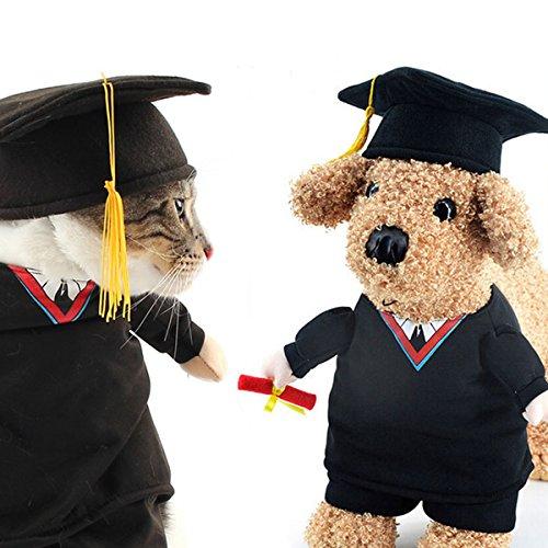 OSPet Funny Pet Graduation Kostüm mit Schwarz Doktorhut für kleine Hunde & Katzen