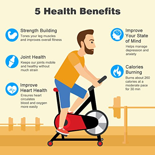 Spinning Bike Lose Weight: Finether Exercise Bike, Indoor Chain Driven Cycling Bike