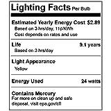 2 Pack BlueX CFL Yellow Bug Light Bulbs 24W