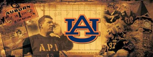 Auburn University Tigers Vintage Sports Wall Mural Wallpaper 3' x 8' by Sport Walls