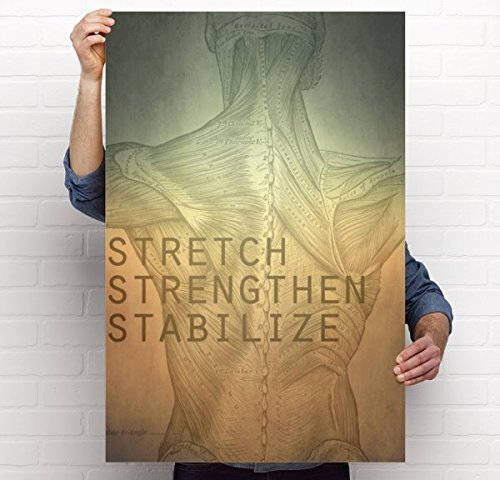 - Clinic Artwork Stretch Strengthen Stabilize Artwork - 18'x24' Poster, Chiropractic Art and Clinic Decor