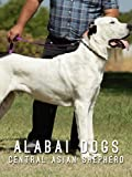 ALABAI DOGS THE GREAT CENTRAL ASIAN SHEPHERDS