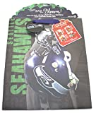 Turner Licensing Seattle Seahawks Large GoGo Gift Bag (8931019)