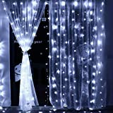 HP95 3MX3M 300LED Fairy Curtain Lights with Remote Control,8 Modes 110V Window Curtain Lights for Xmas Wedding Party Garden Lawn Home Outdoor Decor (White)