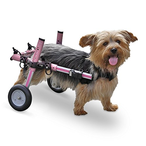 Walkin' Wheels Dog Wheelchair - For Small Dogs 11-17 lbs - Veterinarian Approved - Wheelchair for Back Legs