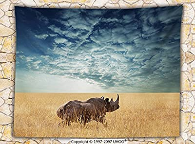 Safari Decor Fleece Throw Blanket Rhino Rhinoceros Sun Shining Through Cloudy Sky Grassland Autumn View Picture Throw