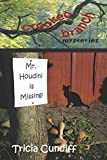 Download Mr. Houdini is Missing (Crooked Branch Mysteries) in PDF ePUB Free Online