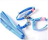 FUNNY365 Soft Pet Harness with Lead for Rabbit...